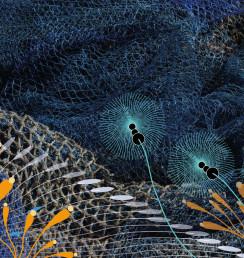 Aquafil | Ecoglamour | Circular Economy | Chic Words